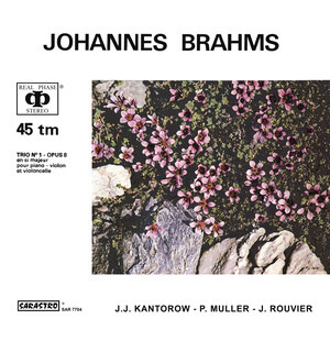 Johannes Brahms: Piano Trio No.1 in B major, Op.8