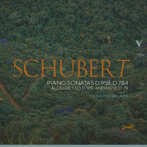 Schubert: Piano Sonatas D.958, D.784 and Other Works