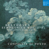 Symphony No.2 in D Major, Op.36: 4.Allegro molto (Arr. for Small Orchestra by Ferdinand Ries)