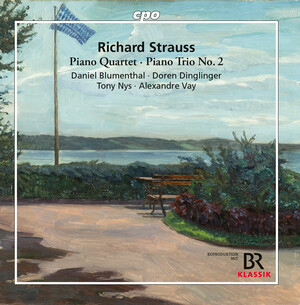 Strauss: Piano Quartet in C Major, Op.13, TrV137 and Piano Trio No.2 in D Major, TrV71