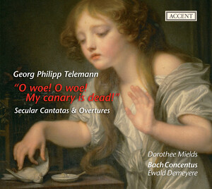 O woe! O woe! My canary is dead! - Secular Cantatas and Overtures by Georg Philipp Telemann